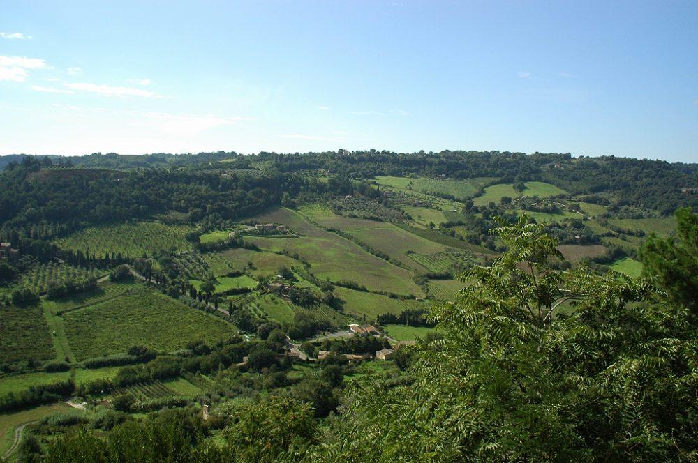 イタリアのハートと呼ばれる、どこまでも続く緑なすウンブリア。オルヴィエートの景観